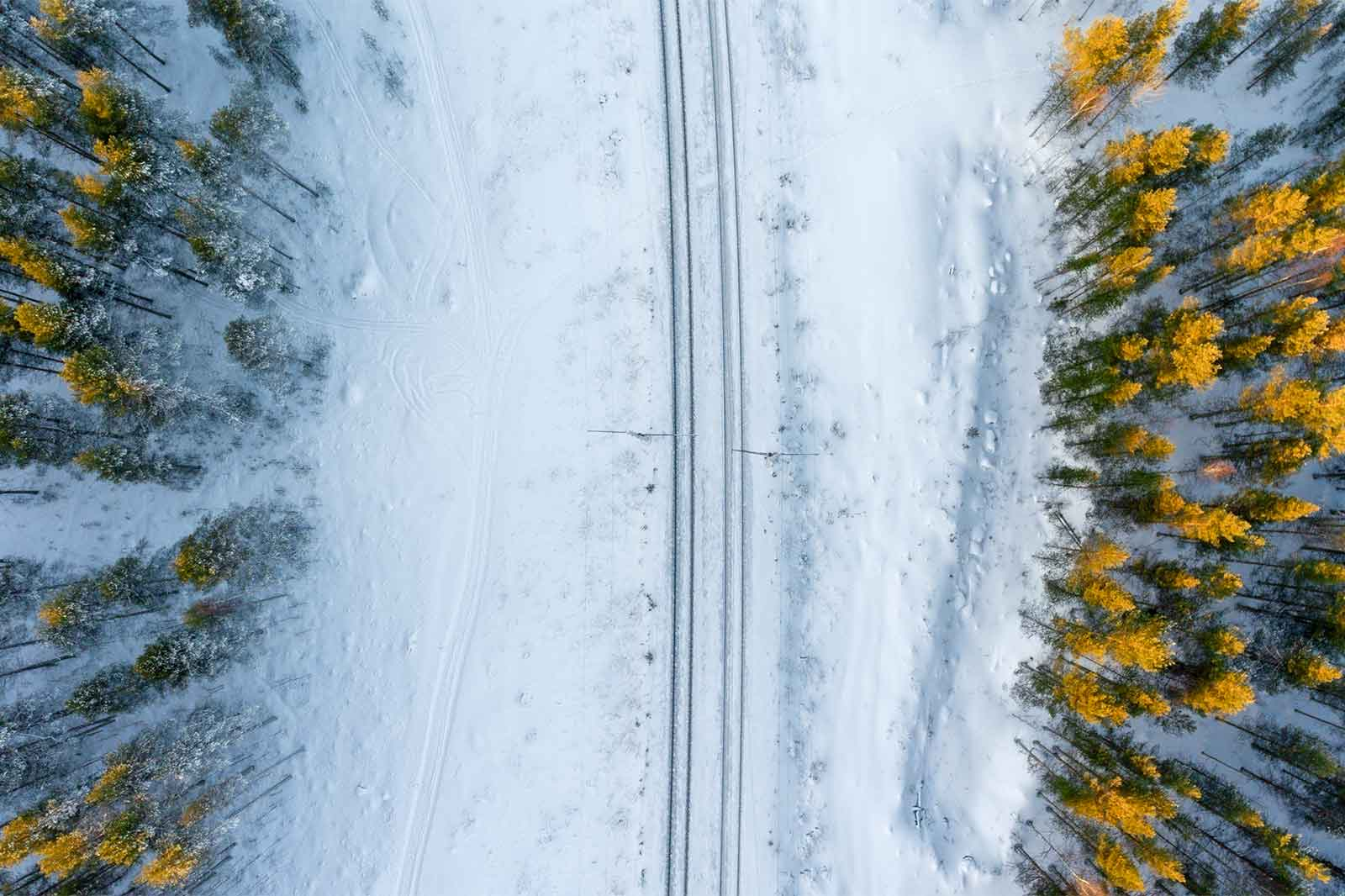 image of train tracks in the middle of a forest with snow
